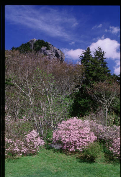 Grandfather Mountain peak