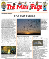 The Bat Caves