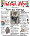 Marvelous Monkeys