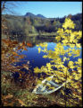 """Grandfather Mountain Lake in Fall"""