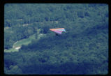 Hang Gliders at Grandfather Mountain