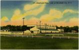 Greyhound Race Track at Morehead City, N.C.