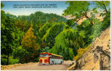 Smoky Mountain Trailways Bus On Highway Thru Great Smoky Mountains National Park