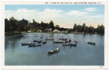 A Part of the Flotilla, Camp Sapphire, Brevard, N.C.
