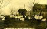 Apiary of N.V. Long, Biscoe, N.C.